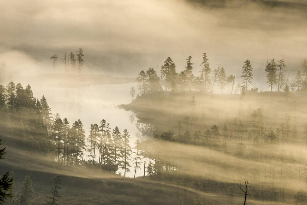 Номинант, 2021. «Акварели туманного утра». На рассвете ленточный туман над озером. Автор Сергей Козлов
