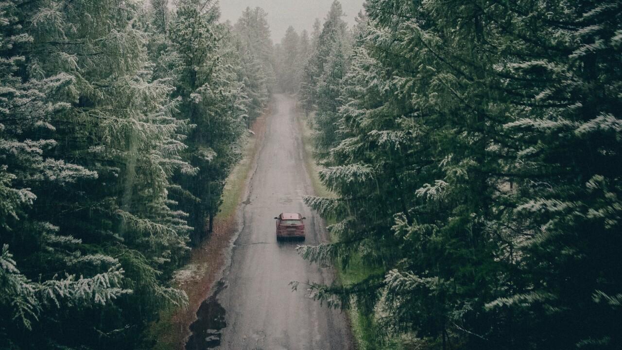 Номинант, 2021. «Зимнее лето». Республика Алтай, июнь 2020 года. Автор Анатолий