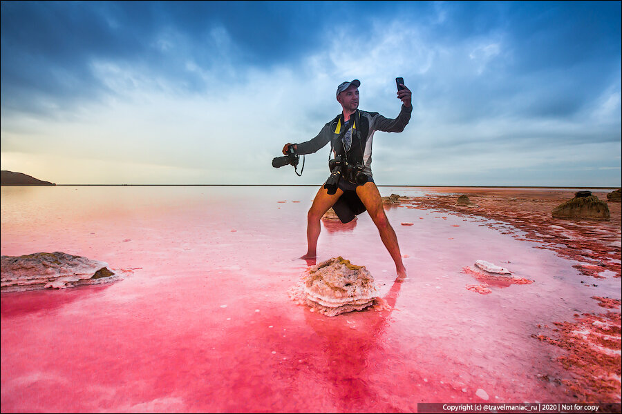 Famous Pink Lake In the Crimea