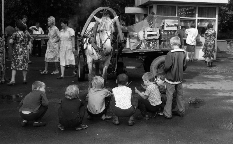 Знакомство с лошадью и телегой. Владимир Соколаев, 25 августа 1987 года, Кемеровская обл., г. Новокузнецк, ул. Веры Соломиной, МАММ/МДФ.