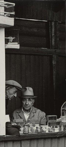 Птичий рынок. Юрий Кривоносов, 1965 год, г. Москва, Большая Калитниковская ул., МАММ/МДФ.