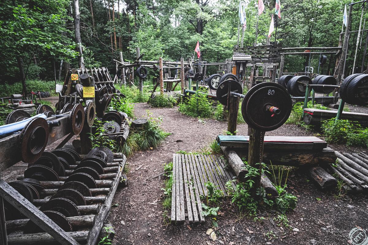 30 лет живу в Москве, а о таком месте не знала! Качалка русских богатырей в лесу