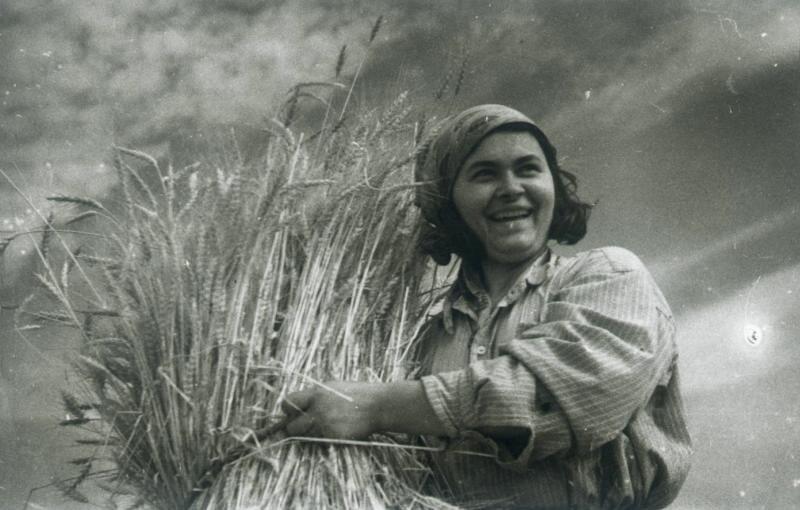 «С хорошим урожаем!». Иван Шагин, 1937 год, МАММ/МДФ.