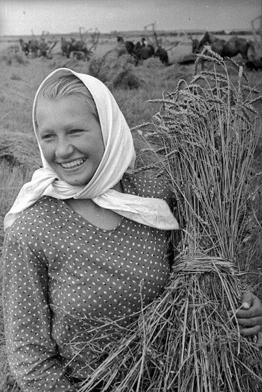 Happy Harvesting Time