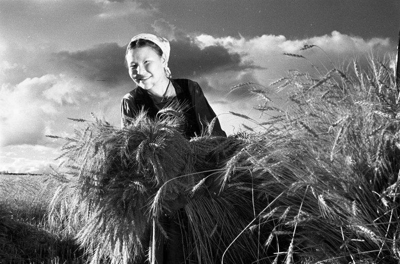 Колхозница. Сигизмунд Кропивницкий, 1957 - 1967 год, Якутская АССР, МАММ/МДФ.