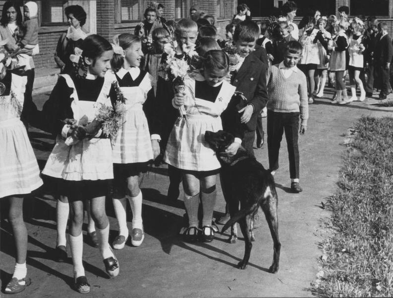 Первое сентября. Всеволод Тарасевич, 1970 - 1975 год, МАММ/МДФ.