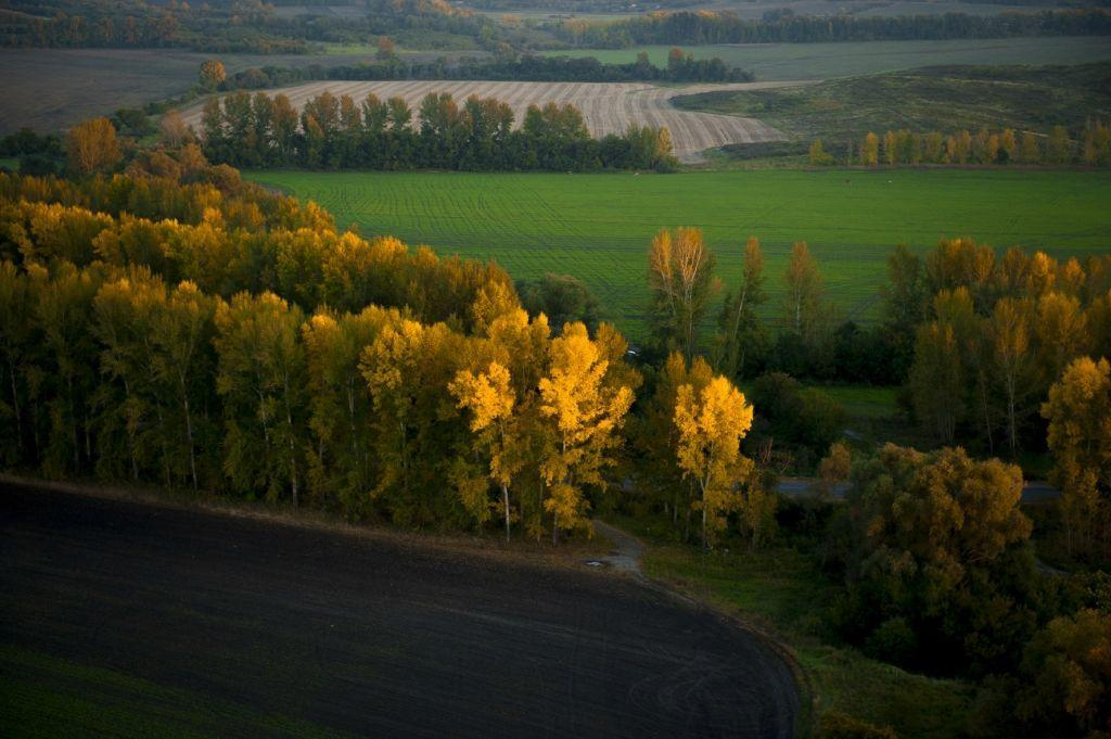 Autumn In Kazakhstan